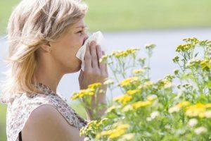PRIMED 2 Honig gegen Pollenallergie
